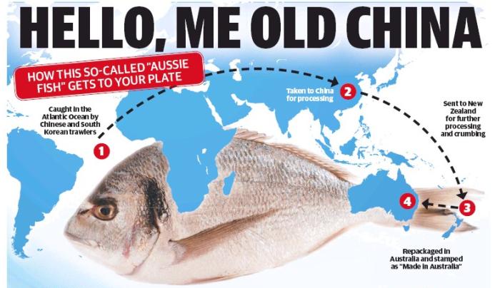 เส้นทางเดินของสินค้าปลาในหนังสือพิมพ์ the Daily Telegraph ฉบับวันที่ 20 กุมภาพันธ์ 2015