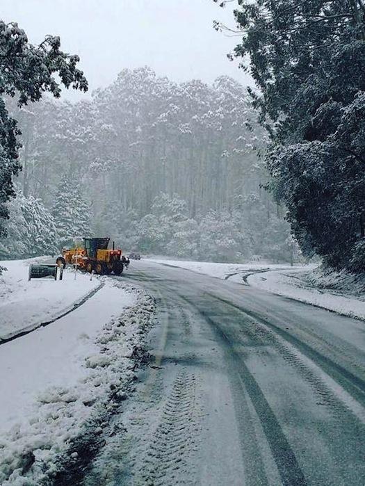 รถเกลี่ยหิมะที่บริเวณที่จอดรถของ 10 Mile Picnic Area ทางผ่านที่จะขึ้นสู่เขา Donna Buang รัฐวิกตอเรีย : ภาพจากเฟสบุ๊ค