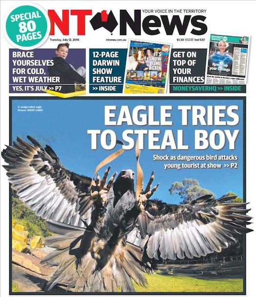 นสพ. NT News ฉบับ 12 ก.ค. 2016 พาดหัวข่าวนกอินทรีพยายามขโมยเด็ก