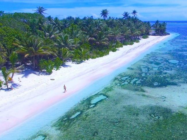 ชายหาดสีขาวไร้สิ่งก่อสร้างที่เป็นมลพิษทางสายตาปรากฎให้เห็นตามริมหาดของเกาะ Kosrae : ภาพจากนสพ. the Telegraph