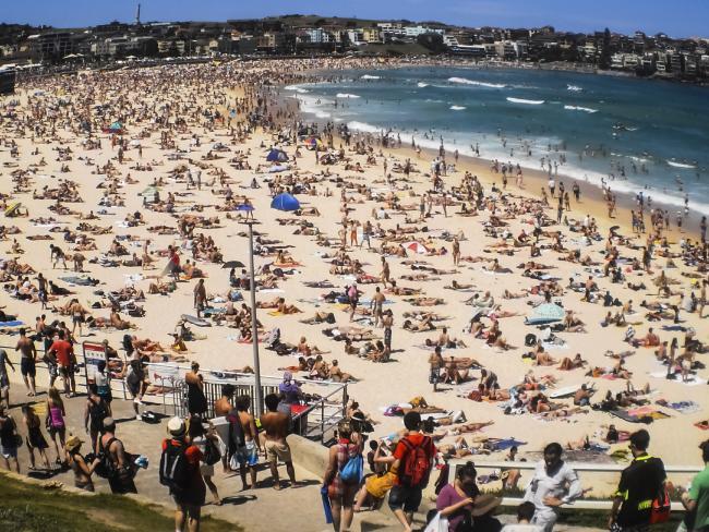 หาด Bondi ชายหาดที่มีชื่อเสียงทั่วโลกในนครซิดนีย์ เป็นหนึ่งในเป้าหมายการก่อการร้ายของ IS : ภาพจากนสพ. the Telegraph