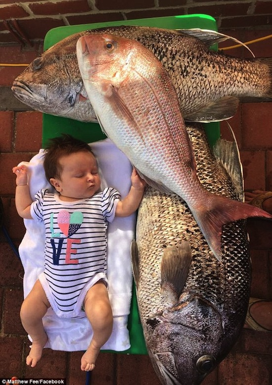 น้องบรู๊ค Brooklyn กับปลาดูห์ฟิชที่พ่อ Matthew จับได้ : ภาพจากนสพ. Daily Mail ต้นฉบับเฟสบุ๊คของนาย Matthew Fee
